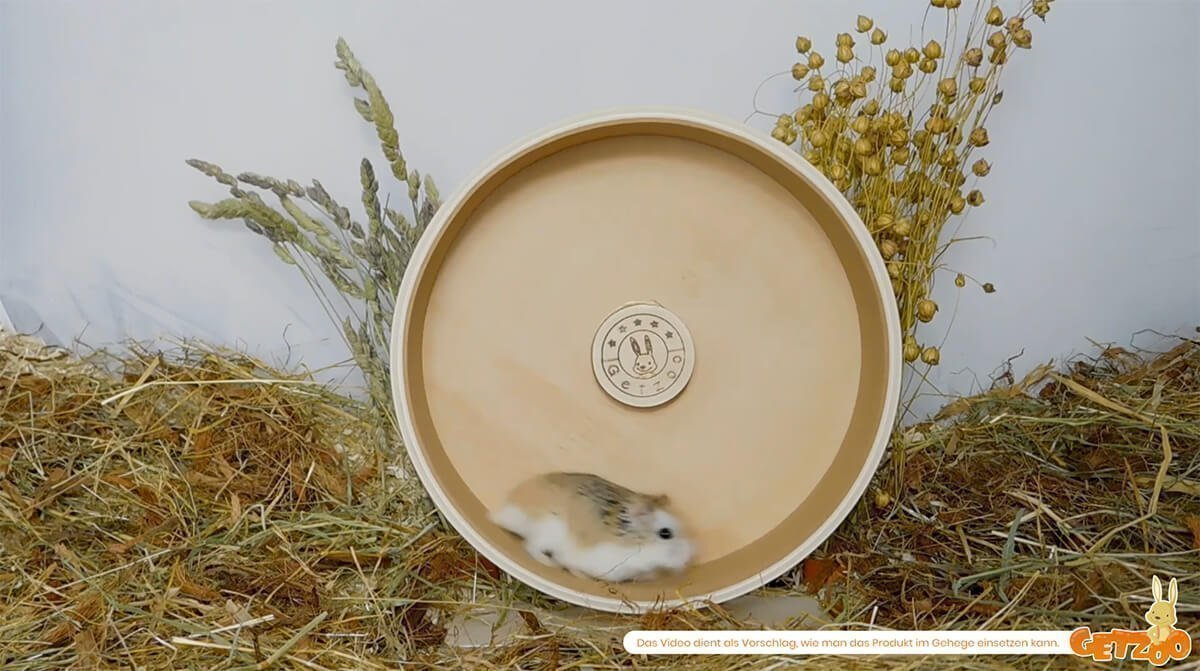 Getzoo Ø 21 cm Korklaufrad (Ø 19,4 cm Innen)