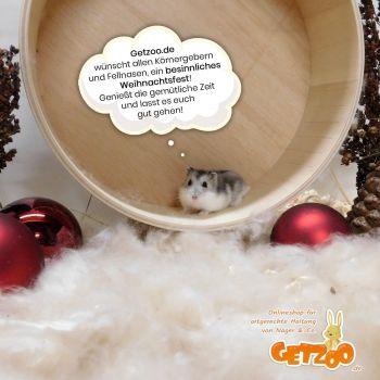 Getzoo-Weihnachten-2019-Merry-Christmas